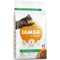 10kg Adult Pro Active Health Riche en poulet IAMS - Croquettes pour Chat