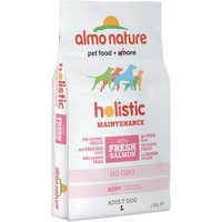 Almo Nature Holistic Dog Food - Large Adult Salmon & Rice - Economy Pack: 2 x 12kg