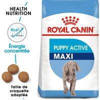 2x15kg Maxi Junior Active Royal Canin Croquettes pour chiot