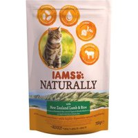 Sparpaket IAMS Naturally Cat Adult 2 x 2,7 kg - Naturally Cat Adult Salmon