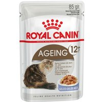 Gemischtes Sparpaket Royal Canin Gelee & Sauce 24 x 85 g - Kitten Instinctive in Sauce und Gelee