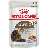 Royal Canin Ageing +12 in Jelly - 12 x 85g