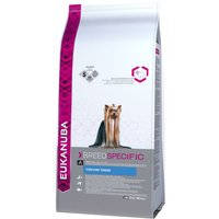 Eukanuba Adult Breed Specific Yorkshire Terrier - lot % : 3 x 2 kg