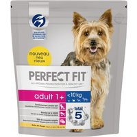 Perfect Fit Adult Small Dogs (