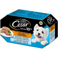 Cesar Senior 10+ Trays Mixed Pack - Saver Pack: 24 x 150g