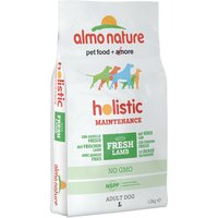 Almo Nature Holistic Dog Food - Large Adult Lamb & Rice - Economy Pack: 2 x 12kg