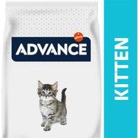 AFFINITY ADVANCE Kitten
