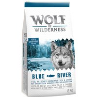 Wolf of Wilderness Adult Blue River - Salmon - 12kg