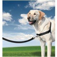 Arnés Easy Walk® PetSafe® para perros - L: 66-91 cm de pecho