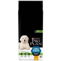 Purina Pro Plan Large Robust Puppy OptiStart pollo - 2 x 12 kg - Pack Ahorro