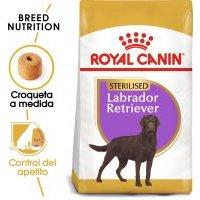 Royal Canin Sterilised Labrador Retriever Adult - 2 x 12 kg - Pack Ahorro