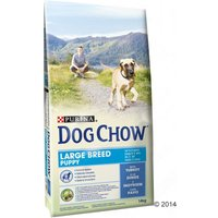 Purina Dog Chow Puppy Large Breed con pavo - 14 kg