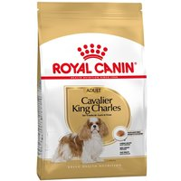 2x7,5kg Cavalier King Charles Adult Royal Canin - Croquettes pour chien