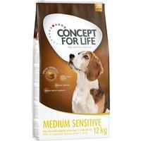 Concept for Life Medium Sensitive - Economy Pack: 2 x 12kg