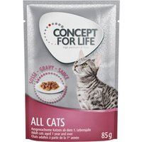 Concept for Life All Cats in Gravy - 24 x 85g
