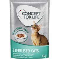 Concept for Life Sterilised Cats in Gravy - 48 x 85g