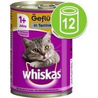 Whiskas 1+ años en latas 12 x 400 g - Pollo en gelatina