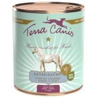Terra Canis sin cereales 6 x 800 g - Pollo