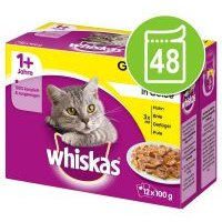 Megapack Whiskas 1+ años 48 x 85/100 g en bolsitas - Casserole Selección de aves y clásicos en gelatina (48 x 85 g)