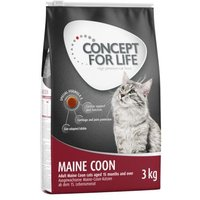 Concept for Life Maine Coon Adult - Als Ergänzung: 12 x 85 g Concept for Life Beauty in Gelee