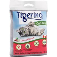 Limited Edition: Tigerino Canada Katzenstreu - Kirschblütenduft - Doppelpack 2 x 12 kg