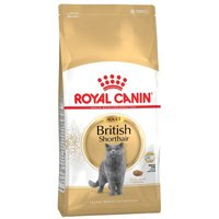 Royal Canin Breed British Shorthair Adult - 10 kg