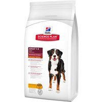 Hills Science Plan Dry Dog Food Economy Packs - Puppy Large Breed Chicken (2x11kg)