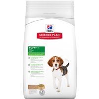 Hill's Puppy Medium Healthy Development con cordero y arroz - 2 x 12 kg - Pack Ahorro