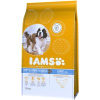 Iams Proactive Health Puppy & Junior Large - Rich Chicken - 12kg