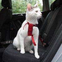Trixie Harnais de sécurité pour voiture pour chat - rouge