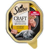 Sheba Classic Terrine Trays - Veal & Chicken (22 x 85g)