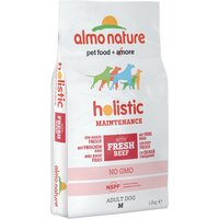 Almo Nature Holistic Dog Food Medium Adult Beef & Rice - Economy Pack: 2 x 12kg