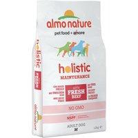 Almo Nature Holistic Dog Food Medium Adult Beef & Rice - 12kg