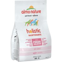 Almo Nature Holistic Dog Food - Small Adult Salmon & Rice - Economy Pack: 3 x 2kg