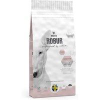 Bozita Robur Sensitive Single Protein Salmon & Rice - Economy Pack: 2 x 12.5kg