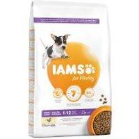 IAMS for Vitality Puppy & Junior Small Medium con pollo fresco - 2 x 12 kg - Pack Ahorro