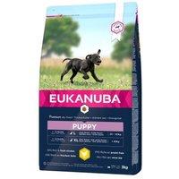 Eukanuba Puppy Large Breed Huhn - 15 kg