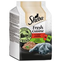 Sheba Fresh Cuisine Taste of Rome 6 x 50 g - Huhn & Truthahn