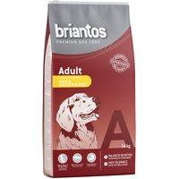 Briantos Adult Chicken & Rice - 3kg