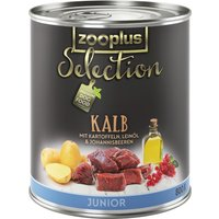 zooplus Selection Junior Veal - 6 x 400g
