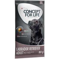 Concept for Life - 80g Trial Pack - Labrador Retriever Adult
