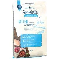 Sanabelle Kitten - 2kg