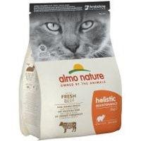 Gemischte Probierpakete Almo Nature - 2 kg Holistic Kitten + 6 x 70 g Kitten