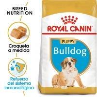 Royal Canin Bulldog Puppy - 12 kg