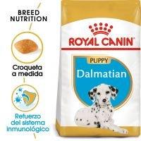 Royal Canin Dálmata Puppy  - 12 kg
