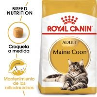 Royal Canin Maine Coon Adult - 2 x 10 kg - Pack Ahorro