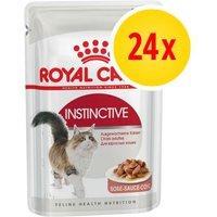 Pack % - Royal Canin sobres 24 x 85 g - Ageing +12 en gelatina