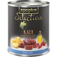 zooplus Selection Junior Kalb (getreidefrei) - 24 x 400 g