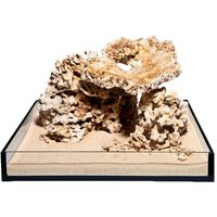 Dead Reef Rock Set - 300 Litre Set: 13 natural rocks, approx. 16 kg