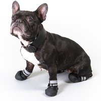 Sports & Protective Dog Boots - Size XL (6)